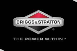 briggs loggo